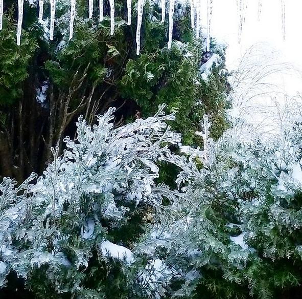 snow ice in Portland