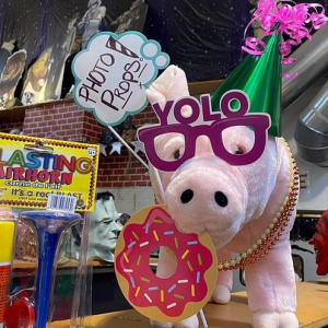 party-pig-photo-props